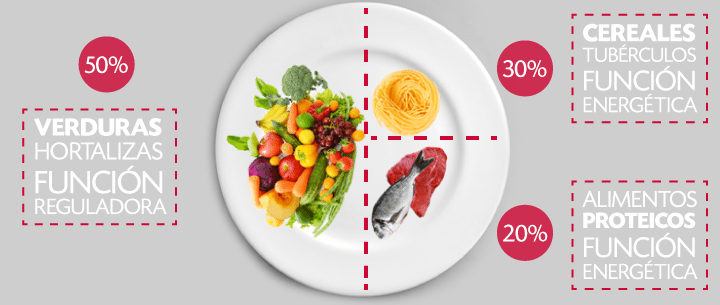 Metodo Plato Harvard alimentación saludable