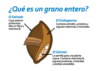 Cereales integrales grano entero